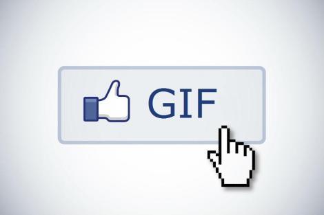 gif-face